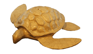 Large Biodegradable Turtle