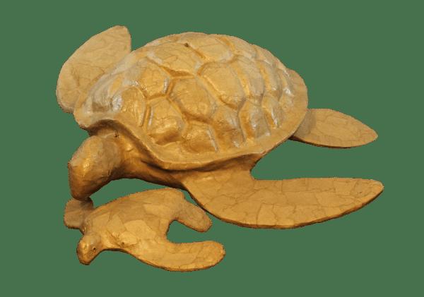 Biodegradable Turtle Urns