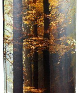 Autumn Woods - Extra Large